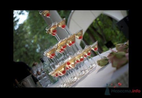 """Фото 12597 в коллекции Мои фотографии - Агентство """"Most"""" - организация свадеб"""