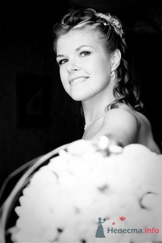Фото 42232 в коллекции Мои фотографии - Marry