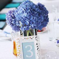 декор свадьбы, оформление свадьбы, синяя свадьба