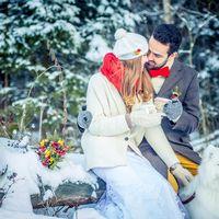 Свадьба зимой собака