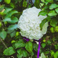 Круглый букет невесты из белых гортензий, украшенный фиолетовой атласной лентой на фоне зеленых листьев