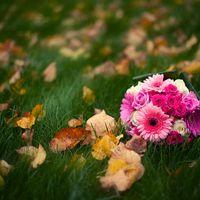 Розовый букет невесты из гербер
