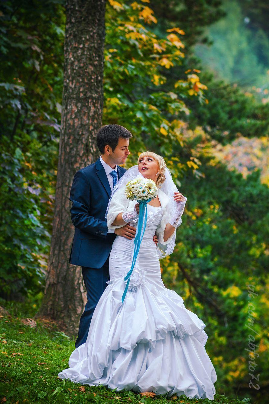свадебные фотографы рыбинска специализируемся поставке профессиональной