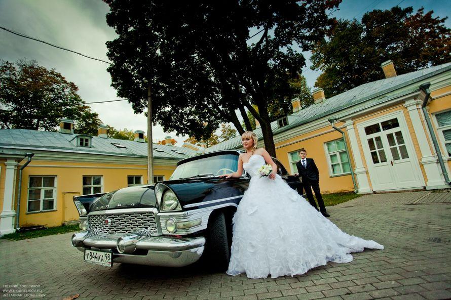 Фото 7915504 в коллекции Портфолио - Фотограф Евгений Гореликов