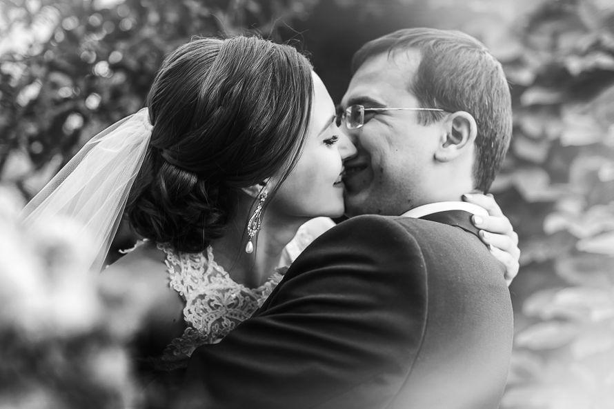 кредитный рейтинг свадебных фотографов костя бриль террористы народовольцы