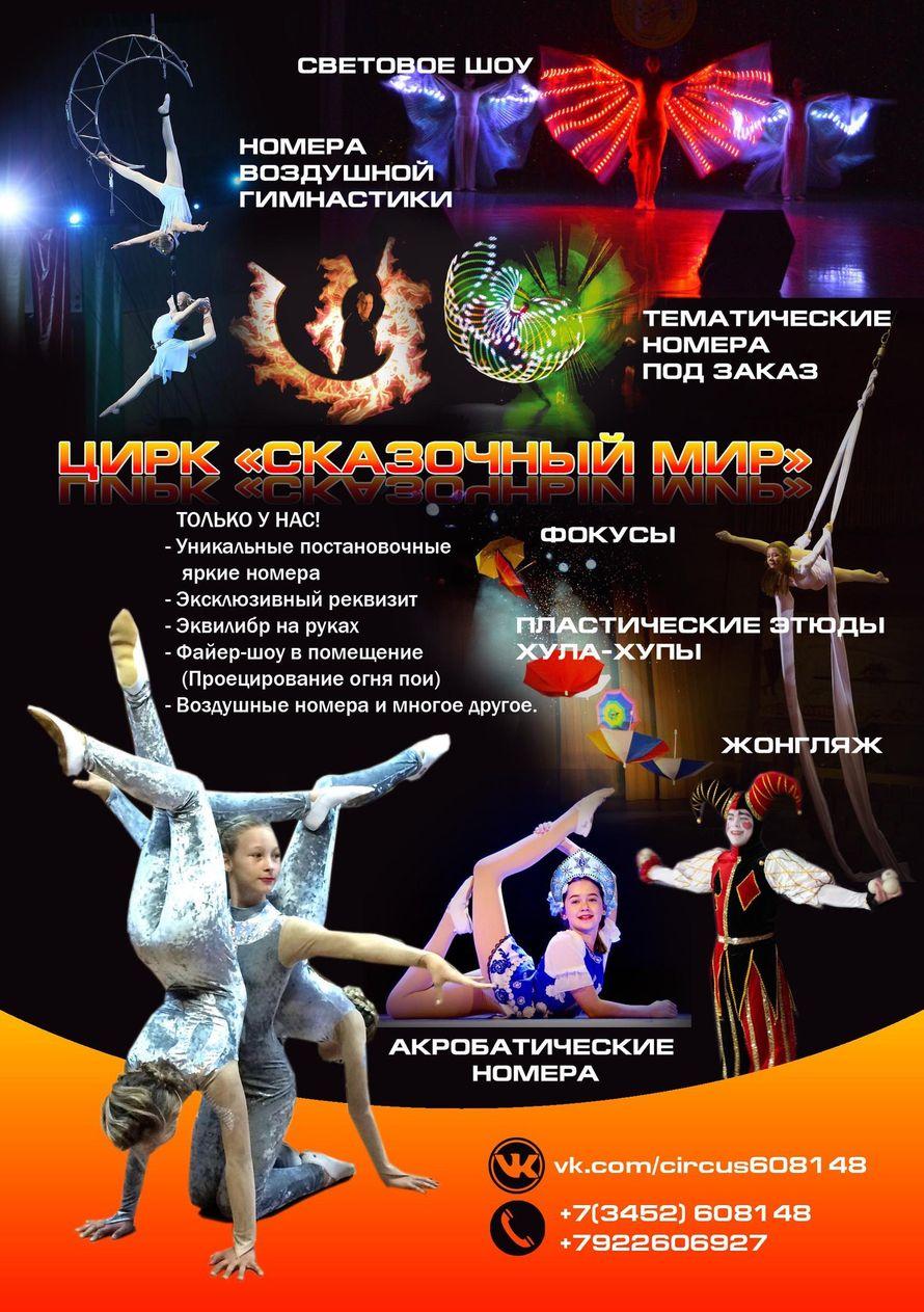 """Фото 16088048 в коллекции Цирковые номера - Эстрадно-цирковая студия """"Сказочный мир"""""""