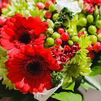 Букет невесты из гербер в красно-зеленых тонах