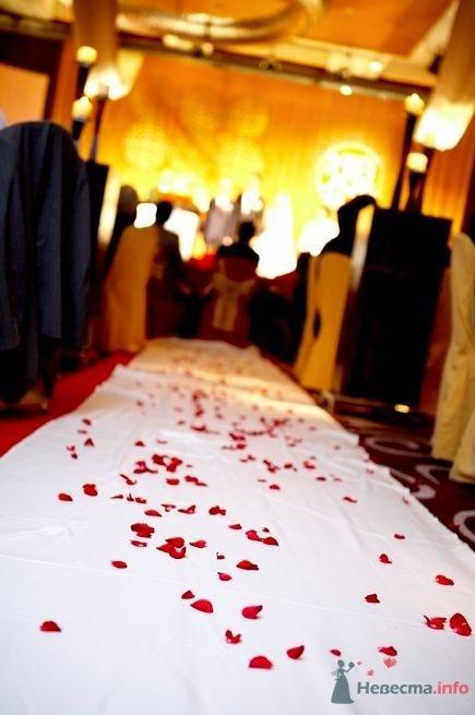 Фото 44942 в коллекции taiwan wedding - YuBinLi