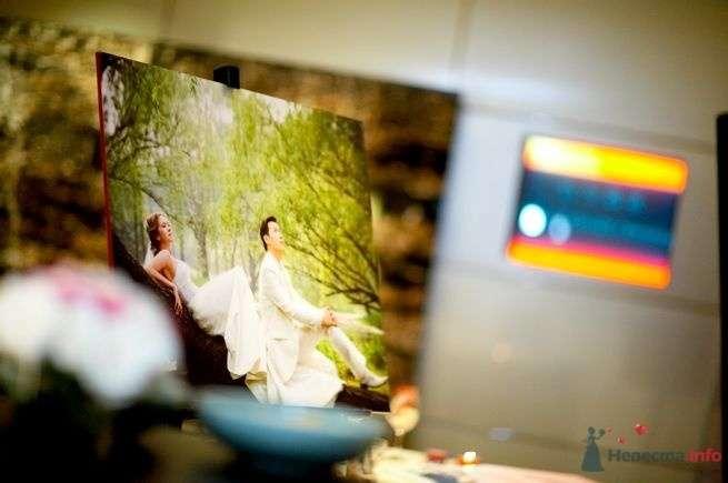 Фото 44982 в коллекции taiwan wedding - YuBinLi