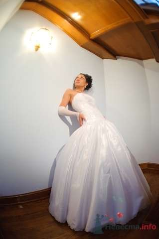 Фото 63520 в коллекции Our wedding - dina_oda