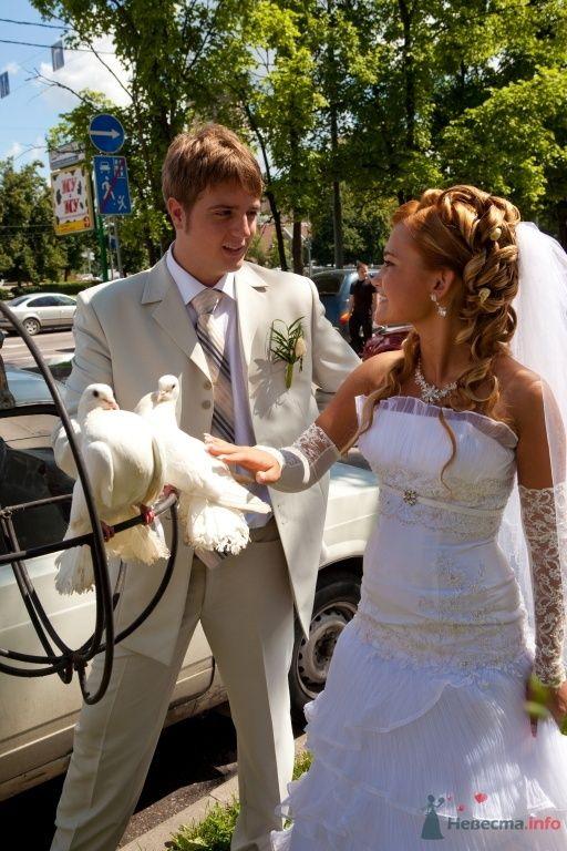 Фото 41872 в коллекции Наша зажигательная Свадьба!11.07.2009 - КатёночкаИзЗелика