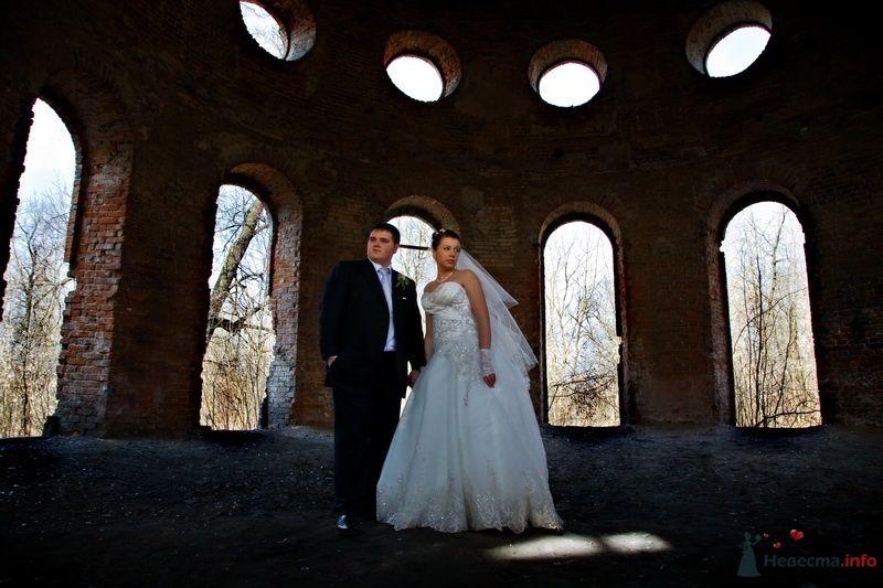 Фото 49882 в коллекции Всякие всякости - Свадебные фотографы StoryOfMoments
