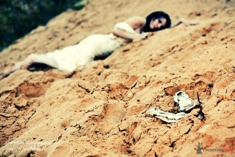 Фото 53738 в коллекции Trash-the-dress или Хмурое утро невесты - Свадебные фотографы StoryOfMoments