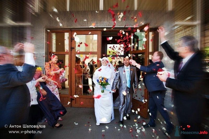 Фото 110265 в коллекции Ольга (ribca_saghira) и Абдельхади. 13 мая 2010. - Свадебные фотографы StoryOfMoments
