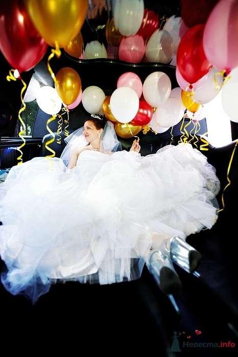 Фото 46256 в коллекции Свадьба Насти и Кости 25.07.09 - Студия свадебной фотографии Сергея Рыжова