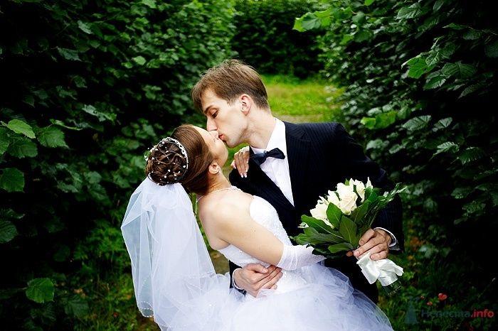 Фото 46264 в коллекции Свадьба Насти и Кости 25.07.09 - Студия свадебной фотографии Сергея Рыжова