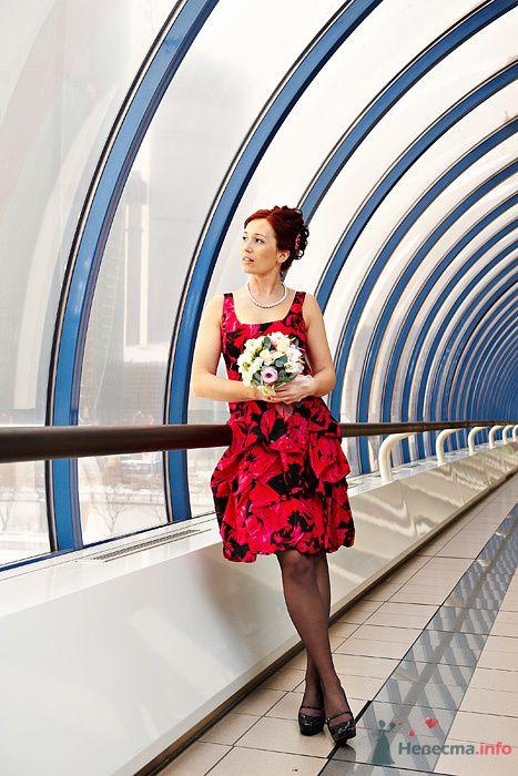 Фото 78923 в коллекции Свадьба Марины и Джордано 10.02.2010 - Студия свадебной фотографии Сергея Рыжова