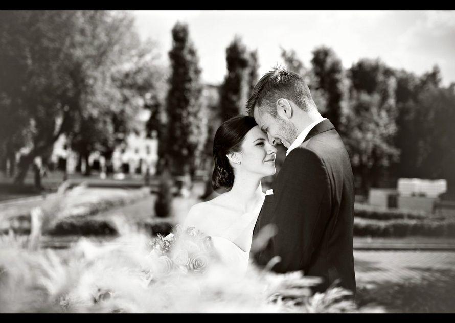 Фото 2084676 в коллекции Свадебная подборка фотографий - Фотограф Roman Barabanshchikov
