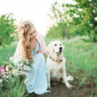 Питомцы на свадебной фотосъемке
