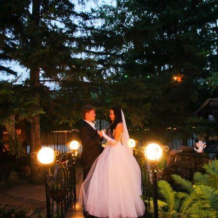 Тамада на свадьбу + диджей, 6 часов