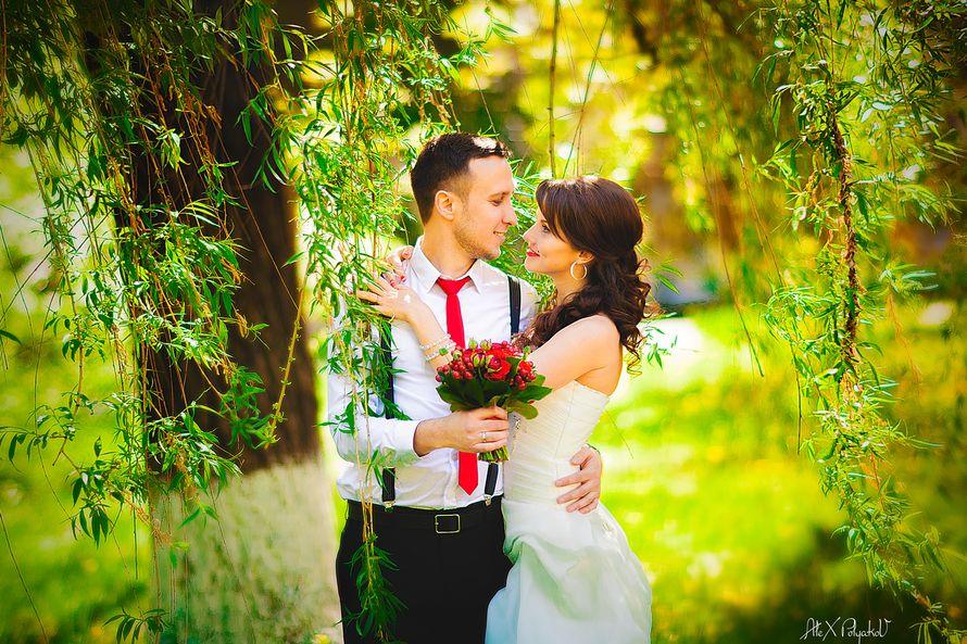 Фото 2381014 в коллекции Мои фотографии - Свадебный Фотограф Александр Поляков