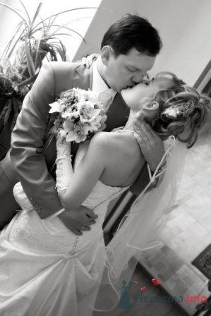 Фото 25660 в коллекции Свадьба А+А (25 апреля 2009) - Annet