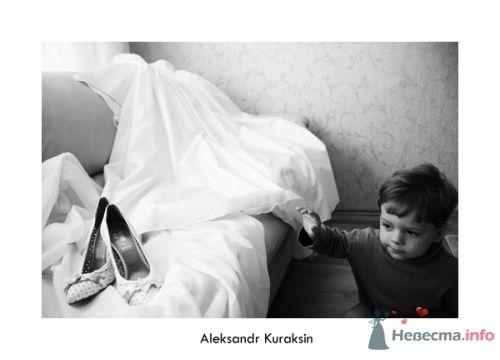Фото 14477 в коллекции свадебные фотографии - Kuraksin Photo - фотоуслуги