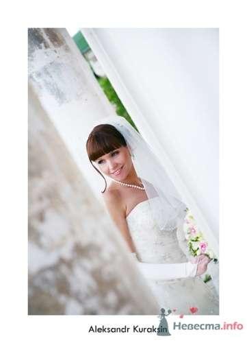 Фото 14478 в коллекции свадебные фотографии - Kuraksin Photo - фотоуслуги