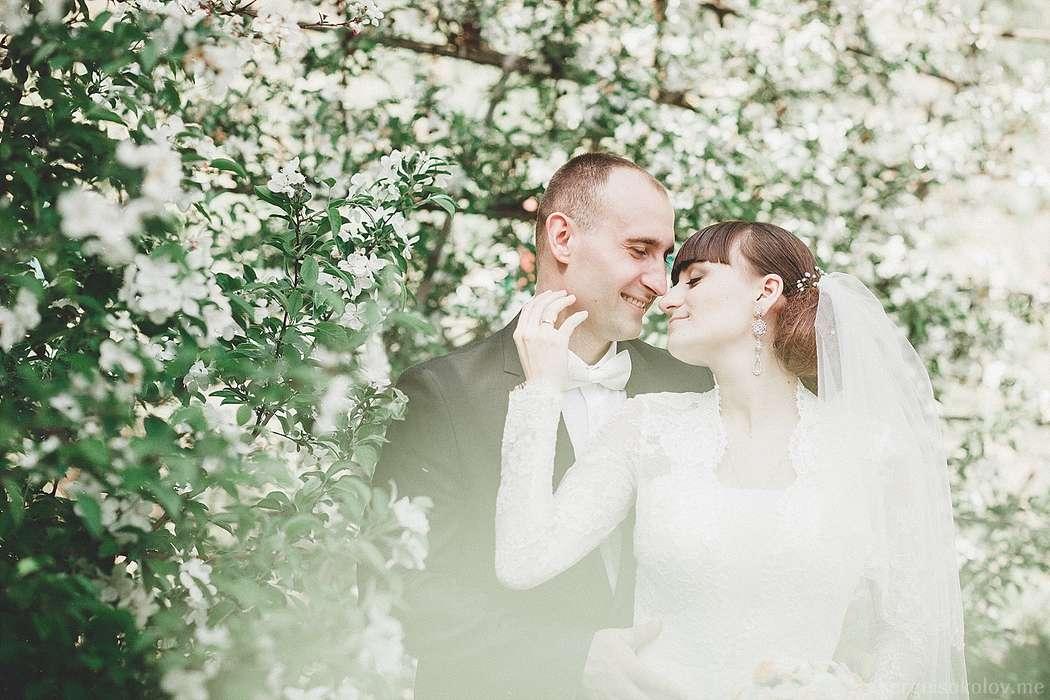 сложные александр соколов свадебное фото различие между
