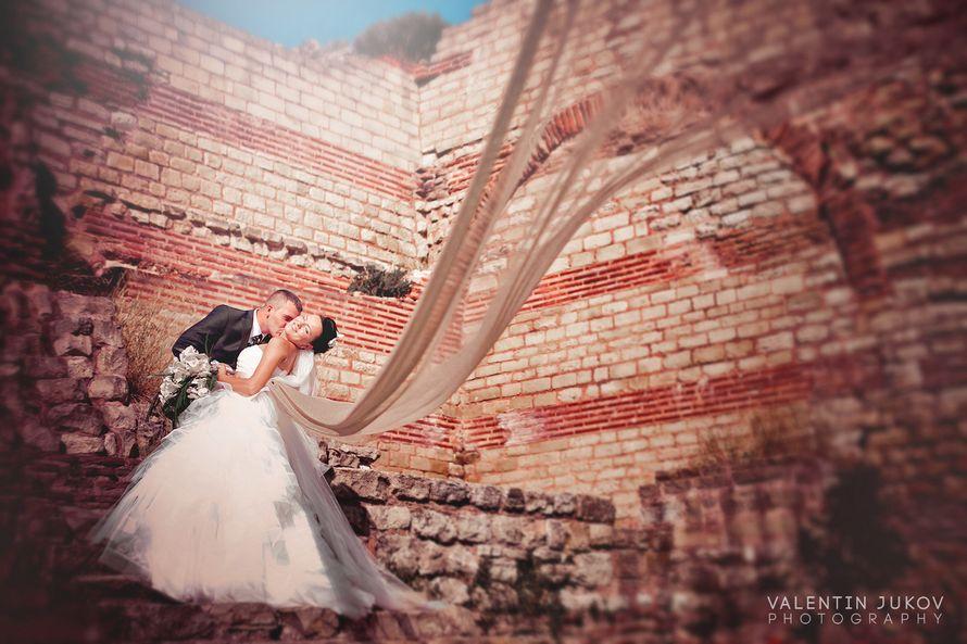 Фото 2197606 в коллекции Портфолио 2012-2014 - Фотограф Валентин Жуков