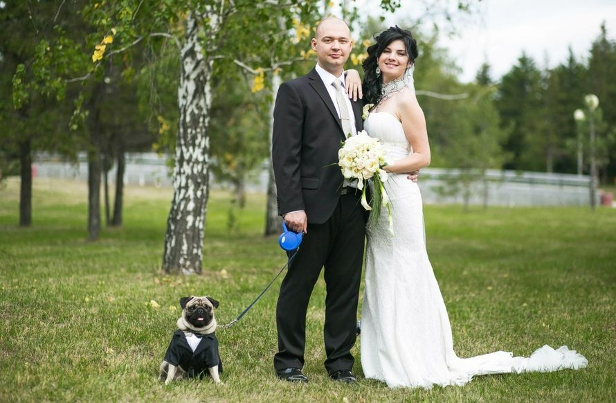 зеленоград где сфотографироваться на свадьбу даже когда отобраны