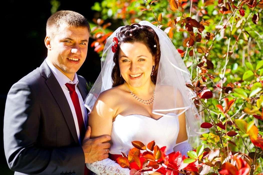 Фото 2279340 в коллекции Wedding - Свадебный фотограф Василий Шешера