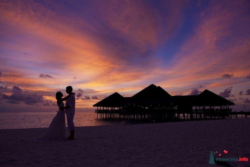 свадебная фотосессия на Мальдивах - фото 314186 TropicPic-Фотосъёмки в Таиланде, Бали, Мальдивах