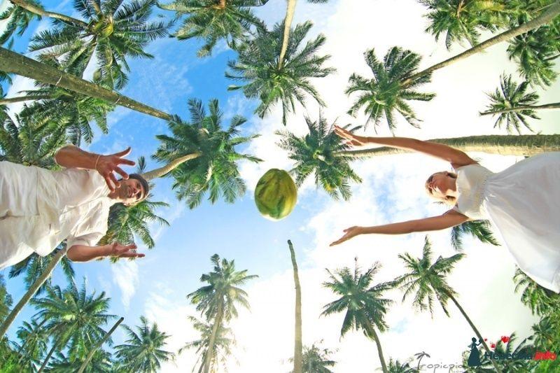 Фото 418992 в коллекции Фотограф в Таиланде, на Бали, Мальдивах, Доминикане, Вьетнаме круглый год! - TropicPic-Фотосъёмки в Таиланде, Бали, Мальдивах