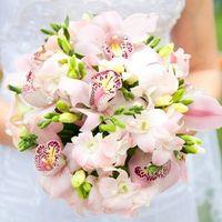 орхидеи - символ неземной любви