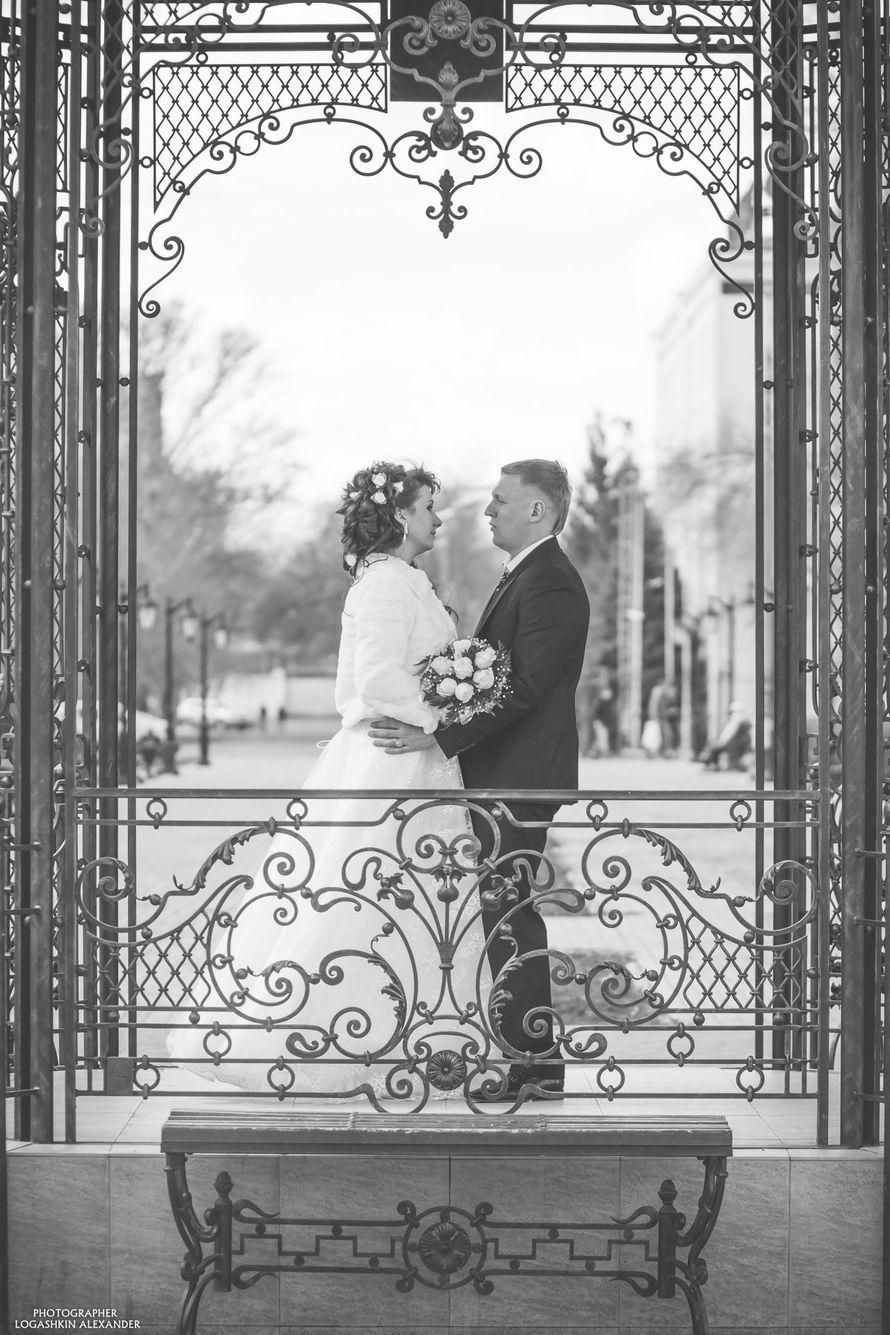 Фото 2379164 в коллекции Wedding 2014 - Logashkin Alexander- фотография