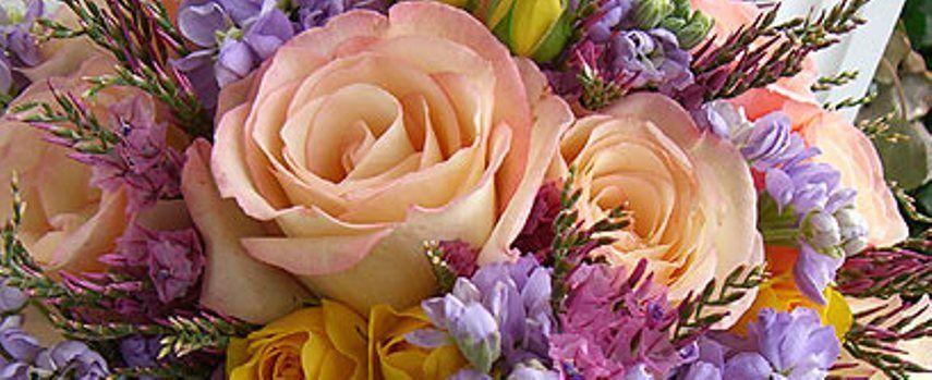 Фото 7309960 в коллекции Стиль, выбранный цвет свадьбы - Italia Viaggi - организация свадеб