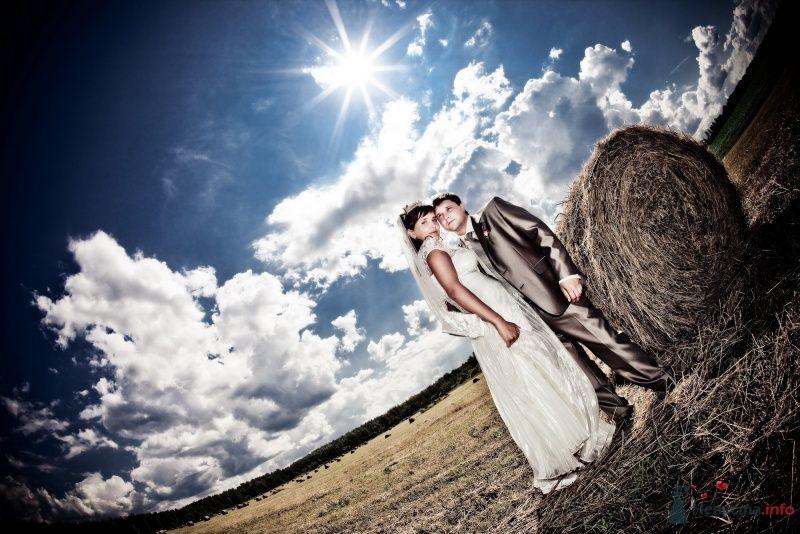 Жених и невеста стоят, прислонившись друг к другу,в поле