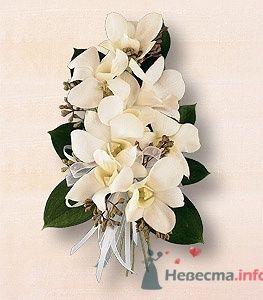 Свадебная бутоньерка - фото 405 Mallina Botanique - праздничное оформление
