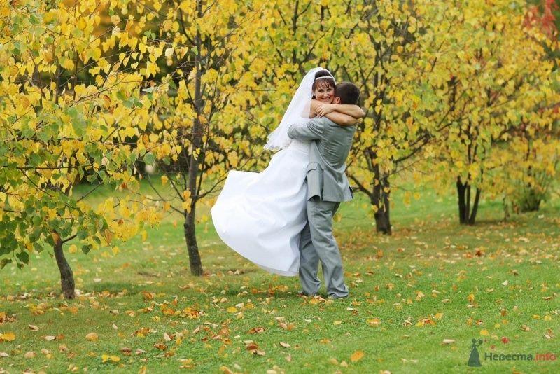 Жених держит на руках невесту в осеннем парке - фото 52752 justy4ka