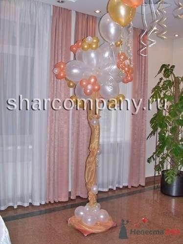 """Свадебное дерево - фото 15614 Компания """"Шар"""" - оформление"""