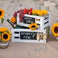 Организация сюрприз-предложения на пляже в Калифрнии, США