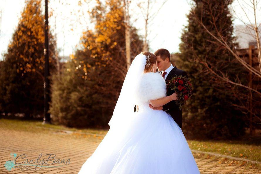 Виталий и Ольга, ноябрь 2015 г. Любовь не знает границ... - фото 9759496 Студия декора и праздника CandyBana