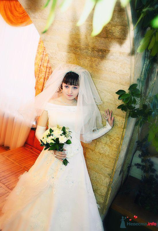 Фото 184733 в коллекции Свадебные фотографии - Свадебный фотограф Александр Аластар