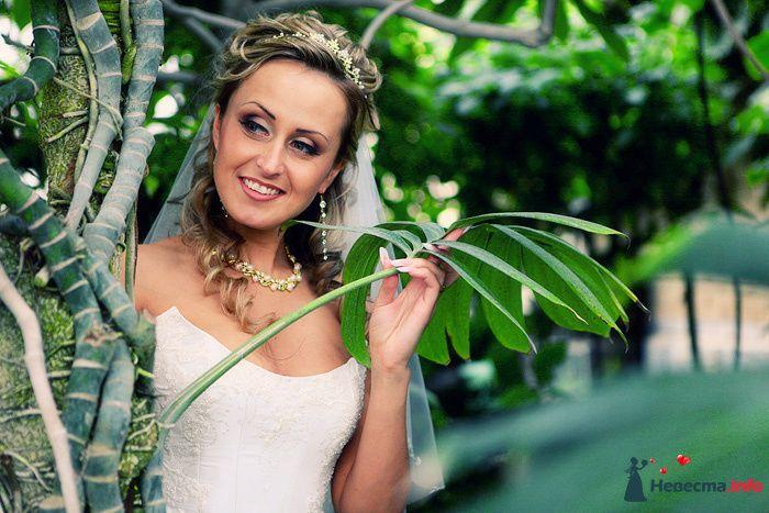 Фото 184738 в коллекции Свадебные фотографии - Свадебный фотограф Александр Аластар