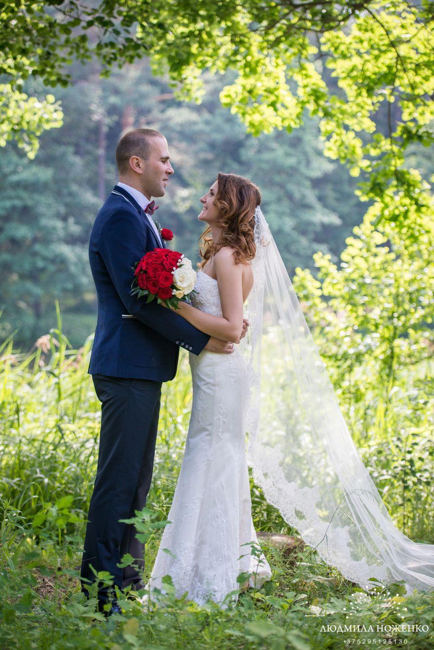 Фото 2517419 в коллекции Мои фотографии - Свадебный и семейный фотограф Людмила Ноженко