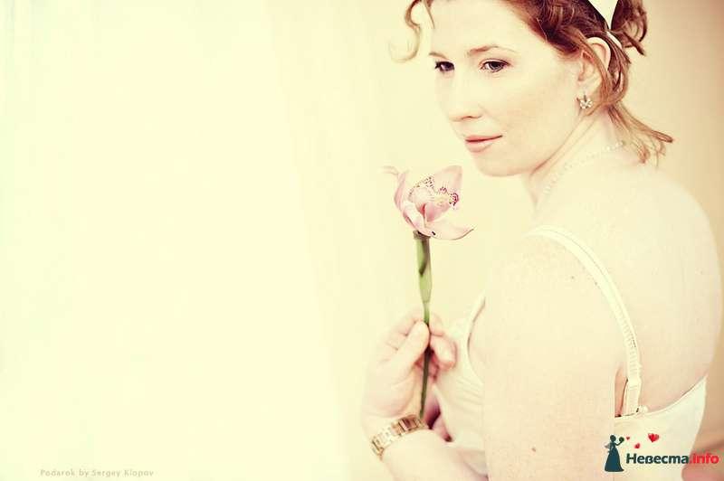 Фото 105539 в коллекции В ожидании малыша - Свадебный фотограф Сергей Клопов