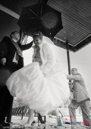 Фото 15661 в коллекции IN real WEDDING WE TRUST…Engel-Ruban