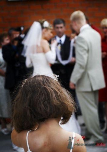 Фото 15678 в коллекции IN real WEDDING WE TRUST…Engel-Ruban - Евгений Энгель-Рубан