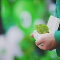 Подушечка для колец на зеленой свадьбе